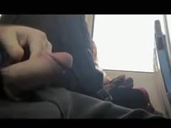 Ravishing girls pretend not to see man stroke shlong in the bus